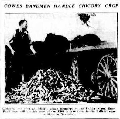 19340709_herald_phibb-crop